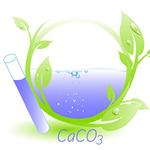 Avaliação Ambiental das Águas Próximas a Atividades Mineradoras de  Calcário